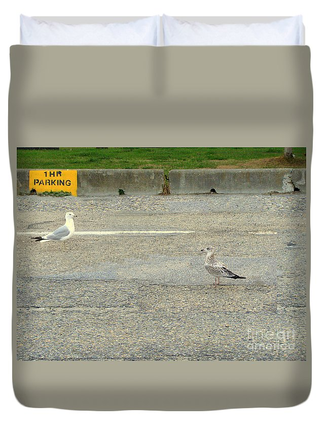 Seagulls Duvet Cover featuring the photograph Is It An Hour Yet by Leone Lund