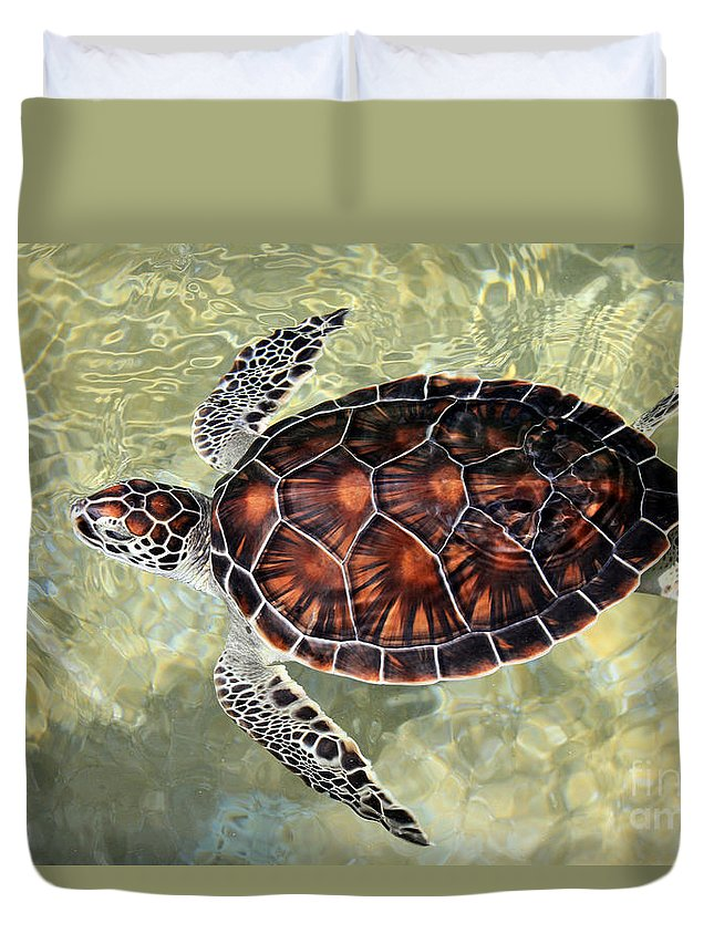 Turtle Duvet Cover featuring the photograph Island Turtle by Carey Chen