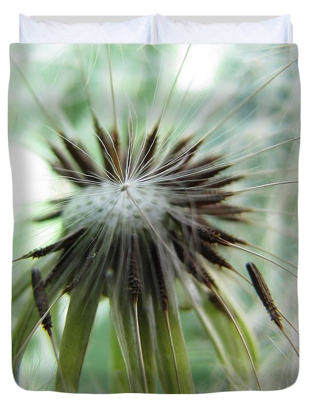 Dandelion Duvet Cover featuring the photograph Isn't It Dandy by Jennifer Wheatley Wolf