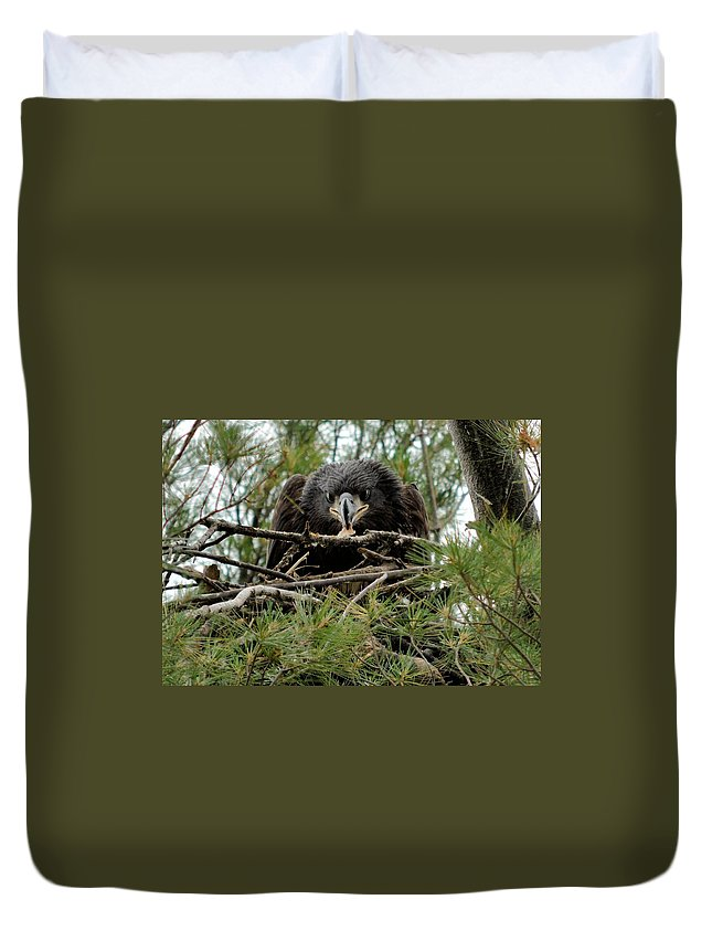 Eagle Duvet Cover featuring the photograph It's Mine by Bonfire Photography