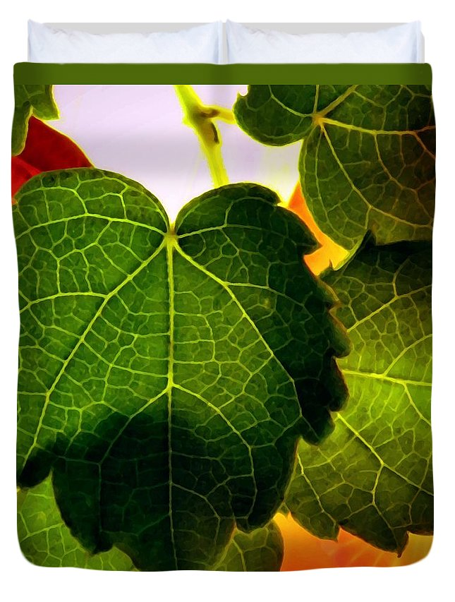 Ivy Duvet Cover featuring the photograph Ivy Light by Chris Berry