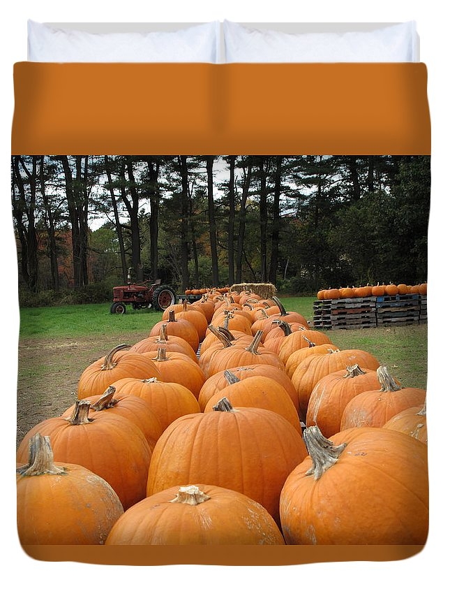 Pumpkins Duvet Cover featuring the photograph Jack O Lanterns In Waiting by Barbara McDevitt