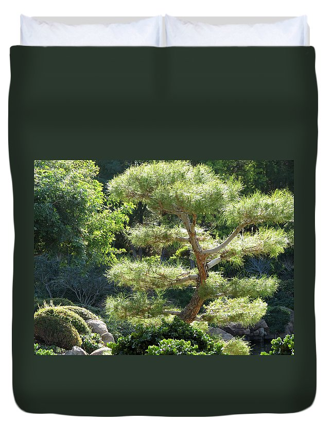 Pine Tree Duvet Cover featuring the photograph Japanese Garden Tree by Laurel Powell