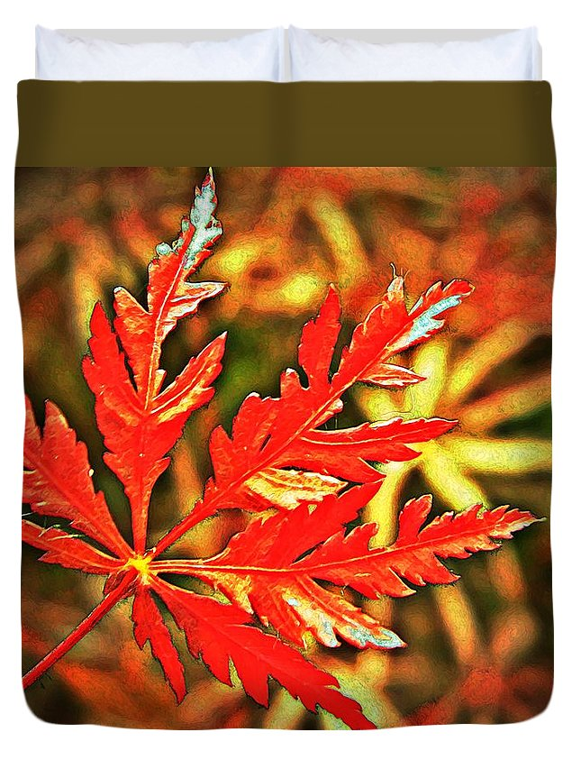 Maple Duvet Cover featuring the photograph Japanese Maple Leaf by Chris Berry