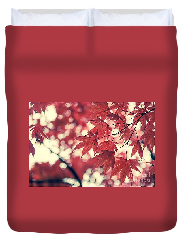Autumn Duvet Cover featuring the photograph Japanese Maple Leaves - Vintage by Hannes Cmarits