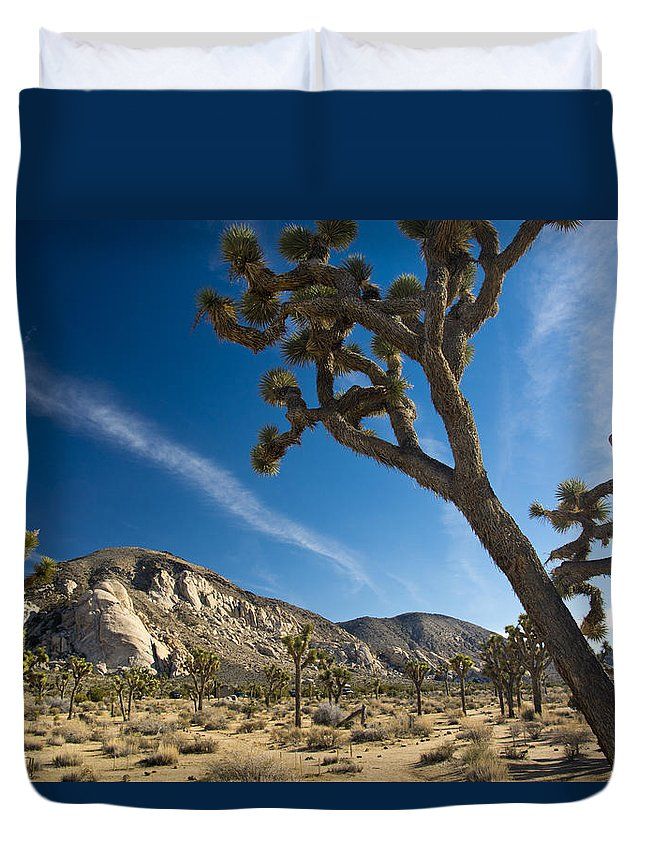 Joshua Tree Duvet Cover featuring the photograph Joshua Tree Afternoon by Doug Matthews