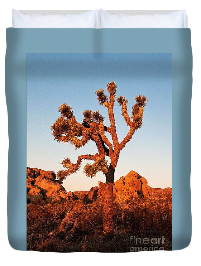 Joshua Tree At Sunset Duvet Cover featuring the photograph Joshua Tree At Sunset by Mae Wertz
