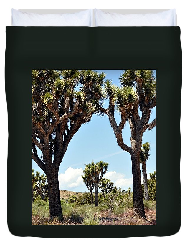 Joshua Tree Duvet Cover featuring the photograph Joshua Trees by Patricia Quandel