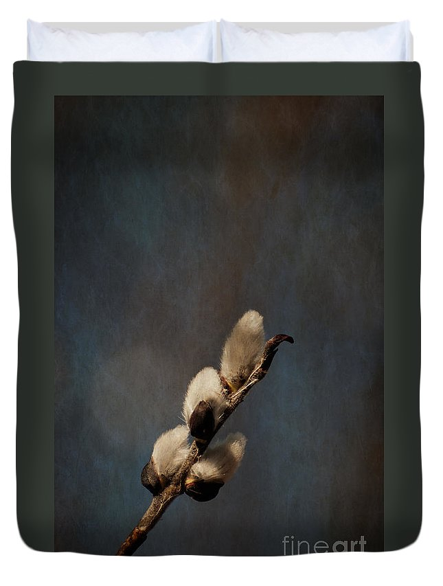 Pussy Willow Duvet Cover featuring the photograph Joys Of Spring by Bianca Nadeau