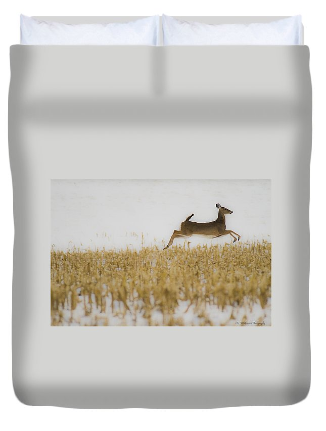 Doe Duvet Cover featuring the photograph Jumping Doe In Corn Field by Crystal Heitzman Renskers