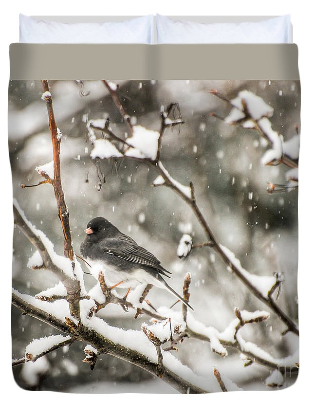 Junco Duvet Cover featuring the photograph Junco In The Snow by Kerri Farley