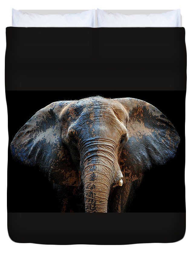 Elephant Duvet Cover featuring the photograph Just A Day At The Spa by Skip Willits