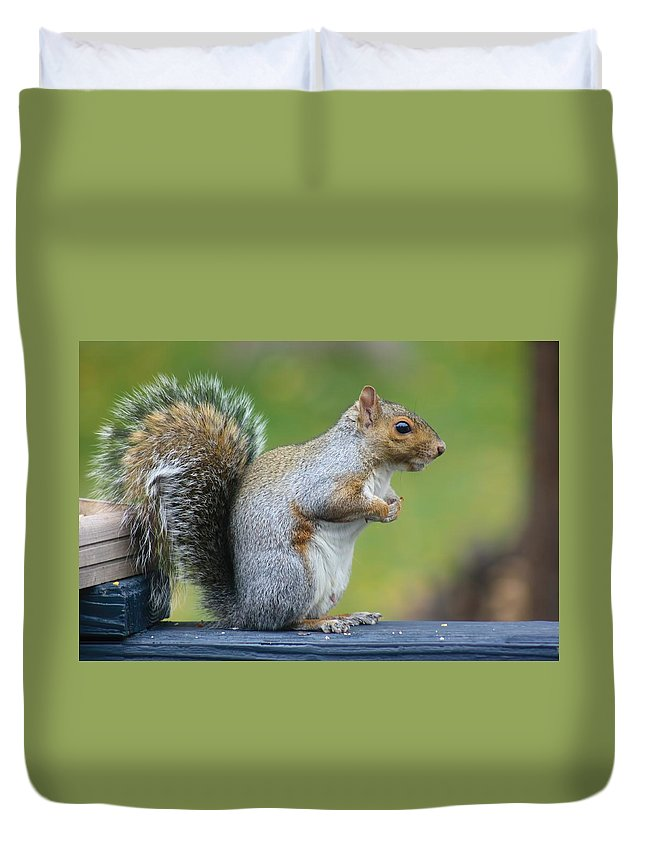 Amanda Stadther Duvet Cover featuring the photograph Just An Observation by Amanda Stadther