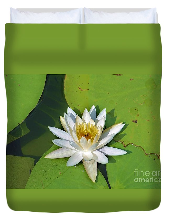 Lily Duvet Cover featuring the photograph Just Fine by Chuck Hicks