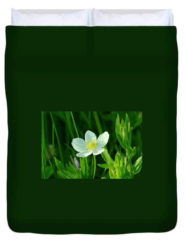 Flowers Duvet Cover featuring the photograph Just One Pretty Flower by Jeff Swan