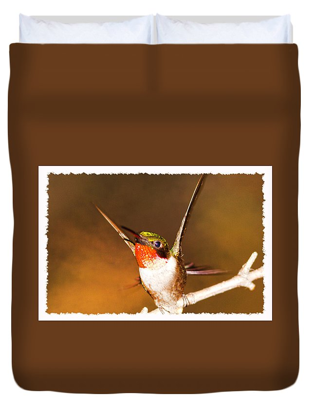 Just Stunning Duvet Cover featuring the photograph Just Stunning by Randall Branham