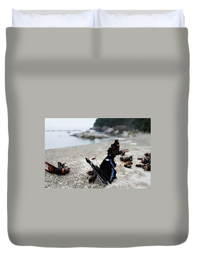 Insect Duvet Cover featuring the photograph Kaniska Canace by Yoshinori ikeda