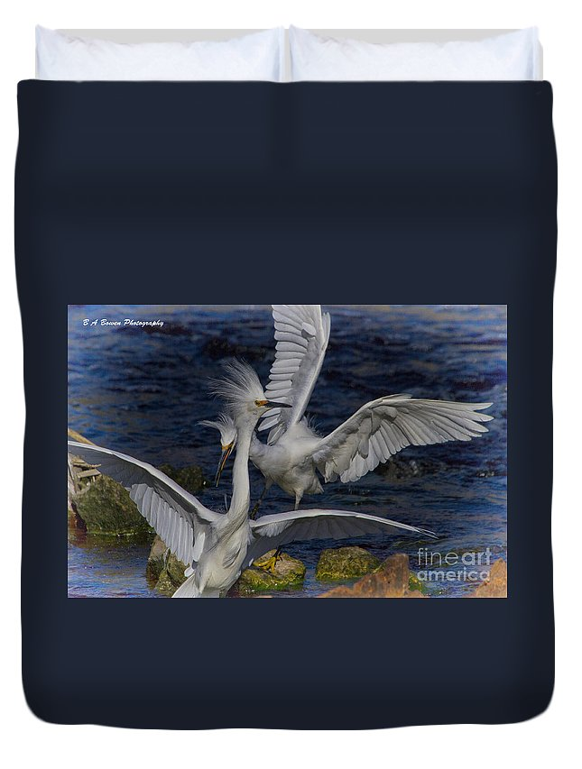 Snowy Egret Duvet Cover featuring the photograph Kerfuffle by Barbara Bowen