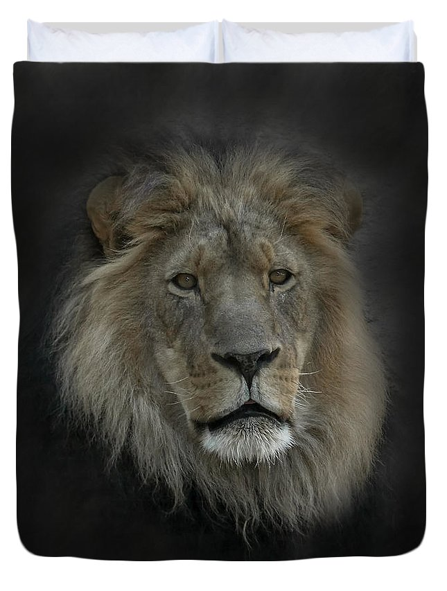 Lion Duvet Cover featuring the photograph King Of Beasts Portrait by Ernie Echols