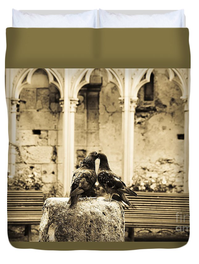 Pigeons Duvet Cover featuring the photograph Kiss In Paris by Lana Enderle