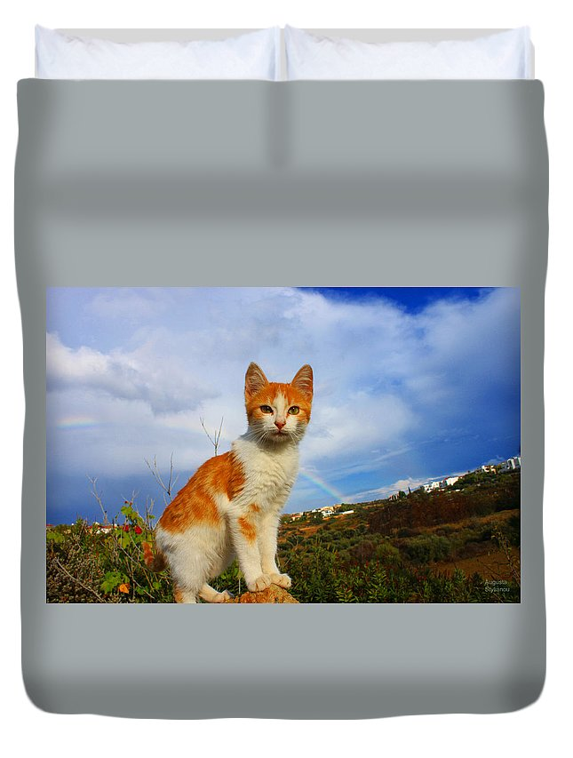 Rainbow Duvet Cover featuring the photograph Kitten And Rainbow by Augusta Stylianou