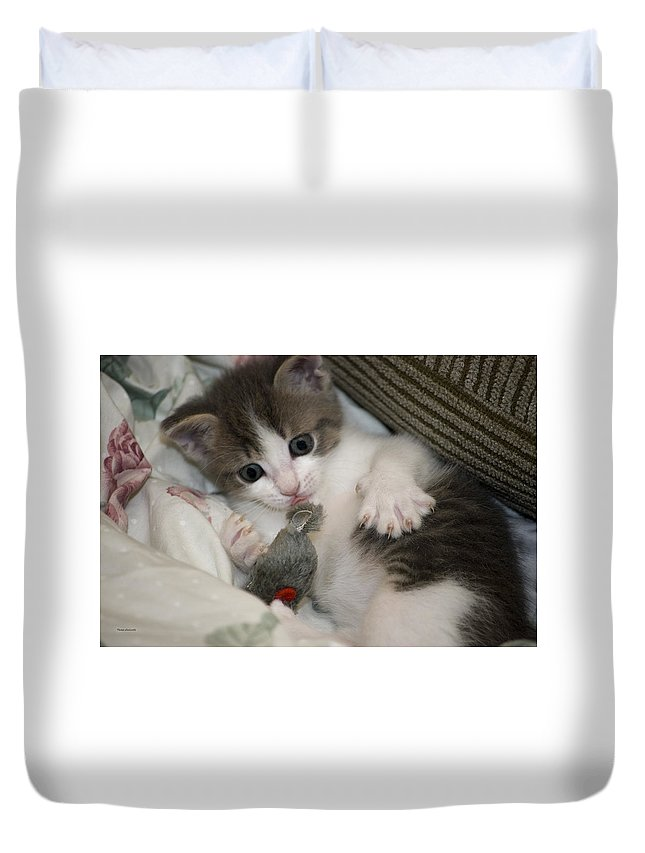 Animals Duvet Cover featuring the photograph Kitty Claws by Thomas Woolworth