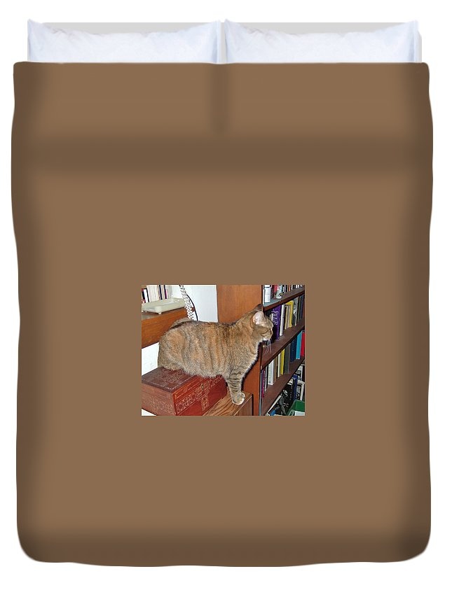 Kitty Duvet Cover featuring the photograph Kitty On The Big Box by Susan Wyman
