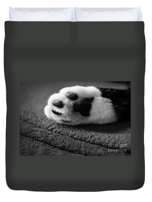 Black And White Duvet Cover featuring the photograph Kitty Paw Close Up by Sharon Dominick