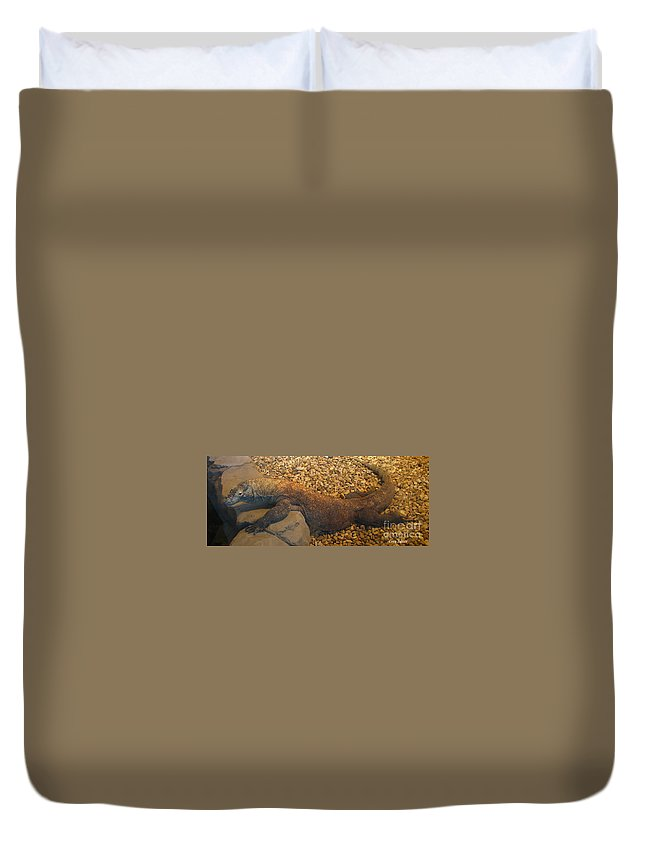 Art For The Wall...patzer Photography Duvet Cover featuring the photograph Komodo by Greg Patzer