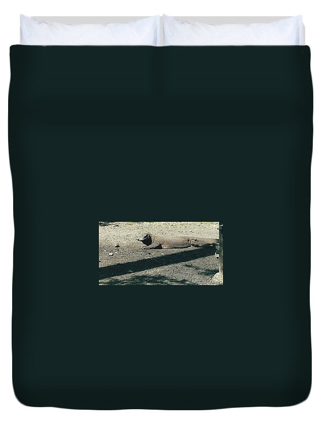 Animal Duvet Cover featuring the photograph Komodo Island Dragon Sunning Itself by Jay Milo