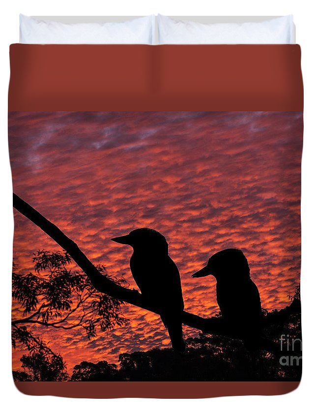 Kookaburras Duvet Cover featuring the photograph Kookaburras At Sunset by Sheila Smart Fine Art Photography