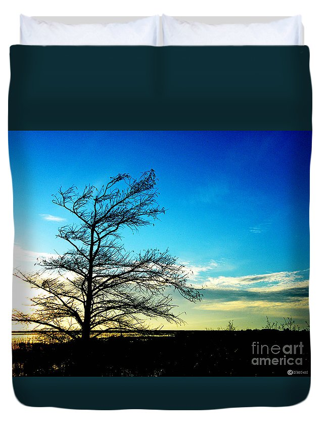 Lacassine Duvet Cover featuring the photograph Lacassine Tree by Lizi Beard-Ward