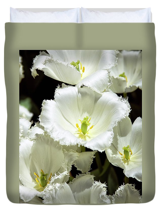 White Flower Duvet Cover featuring the photograph Lace Palm Springs by William Dey