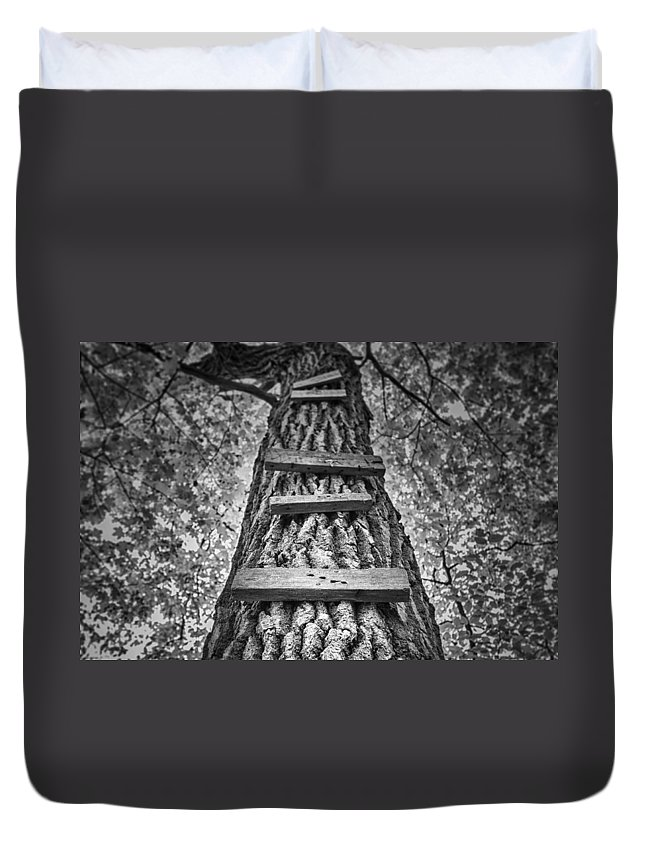 Tree Duvet Cover featuring the photograph Ladder To The Treehouse by Scott Norris