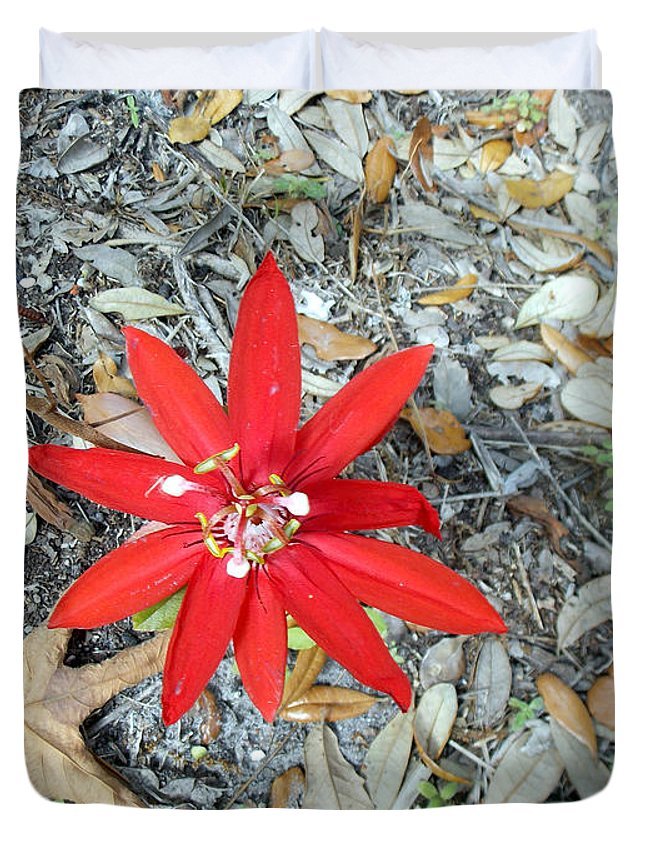 Passion Flower Duvet Cover featuring the photograph Lady In Red by To-Tam Gerwe