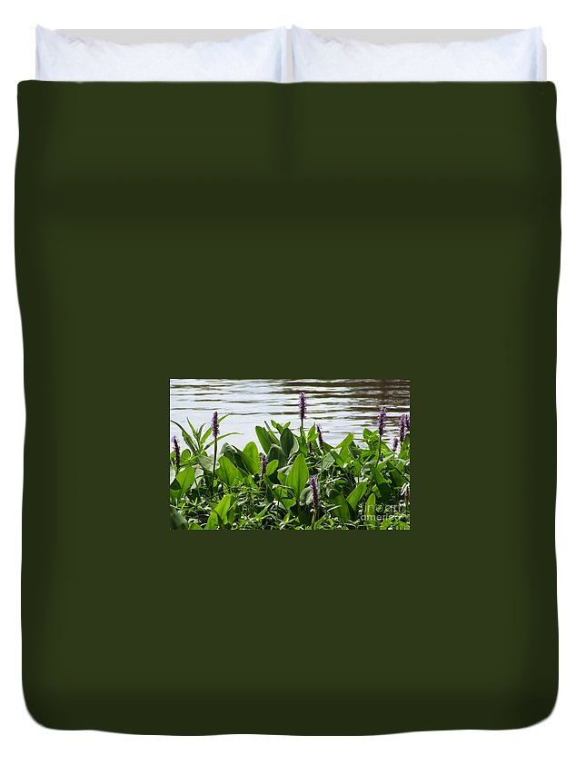 Lake Duvet Cover featuring the photograph Lake Day by Andrea Anderegg