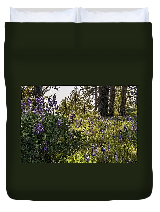 Figueroa Mountain Duvet Cover featuring the photograph Land Of The Lupines by Lynn Bauer