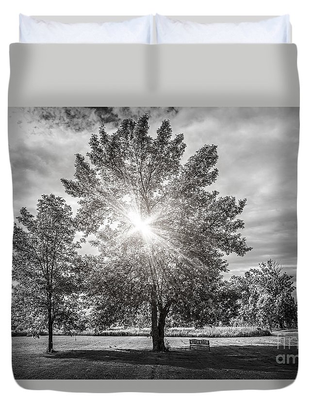 Trees Duvet Cover featuring the photograph Landscape With Sun Shining Though Trees by Elena Elisseeva
