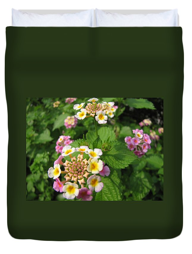 Flowers Duvet Cover featuring the photograph Lantana by Beth Vincent