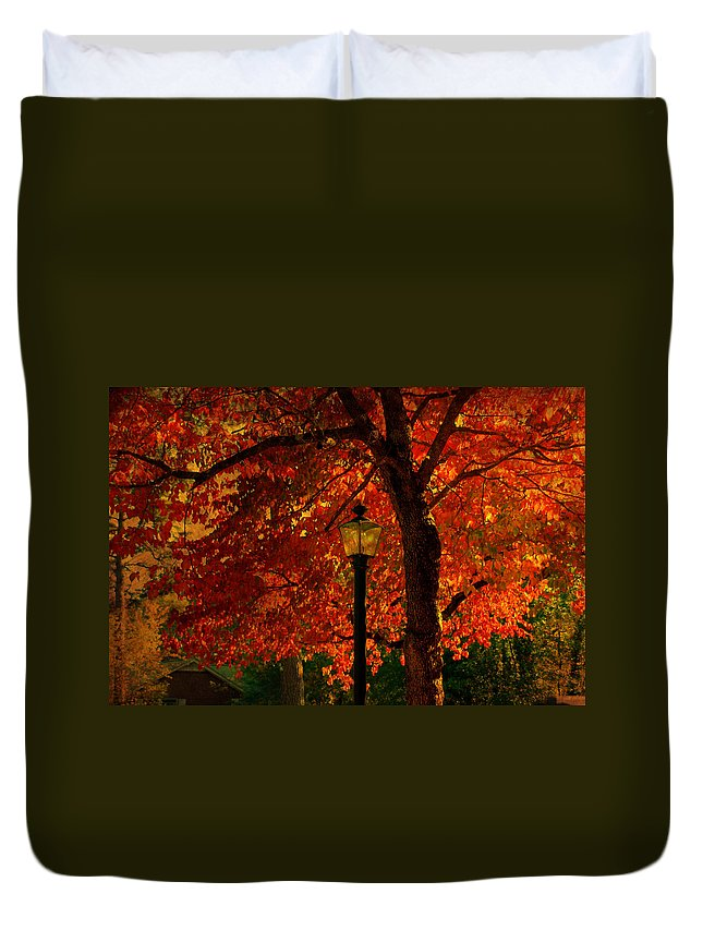 Autumn Duvet Cover featuring the photograph Lantern In Autumn by Susanne Van Hulst
