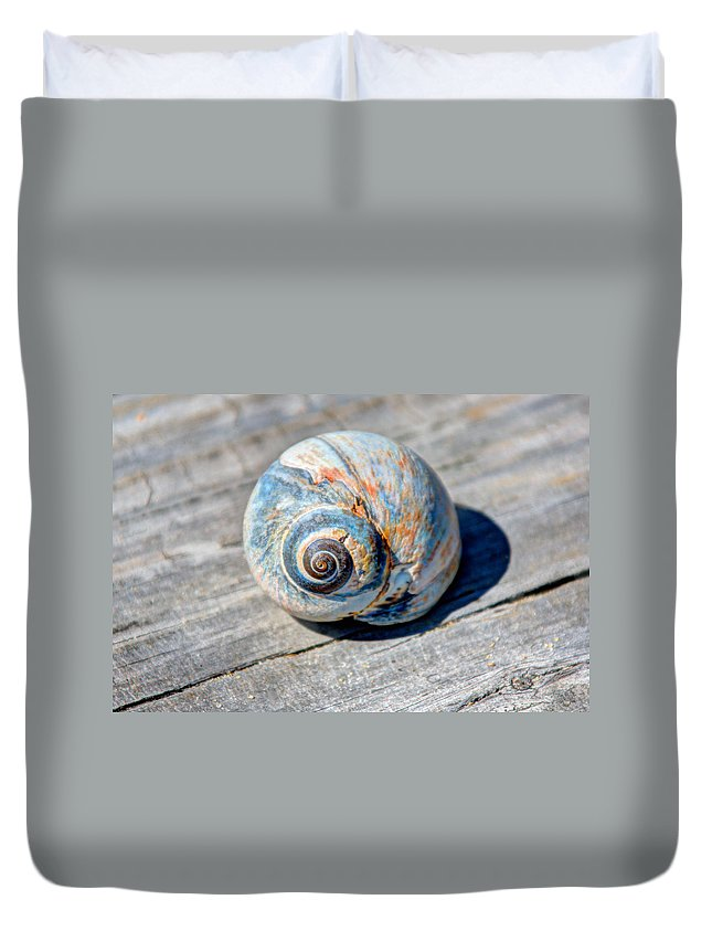 Massachusetts Duvet Cover featuring the photograph Large Snail Shell by Laura Duhaime