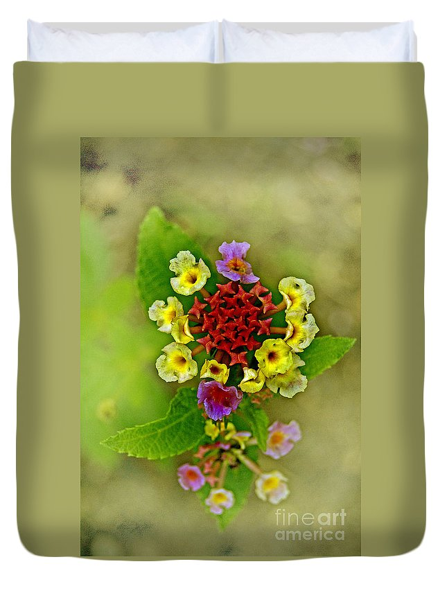Pictures Of Flowers Duvet Cover featuring the photograph Last Blooms Number Four by Skip Willits
