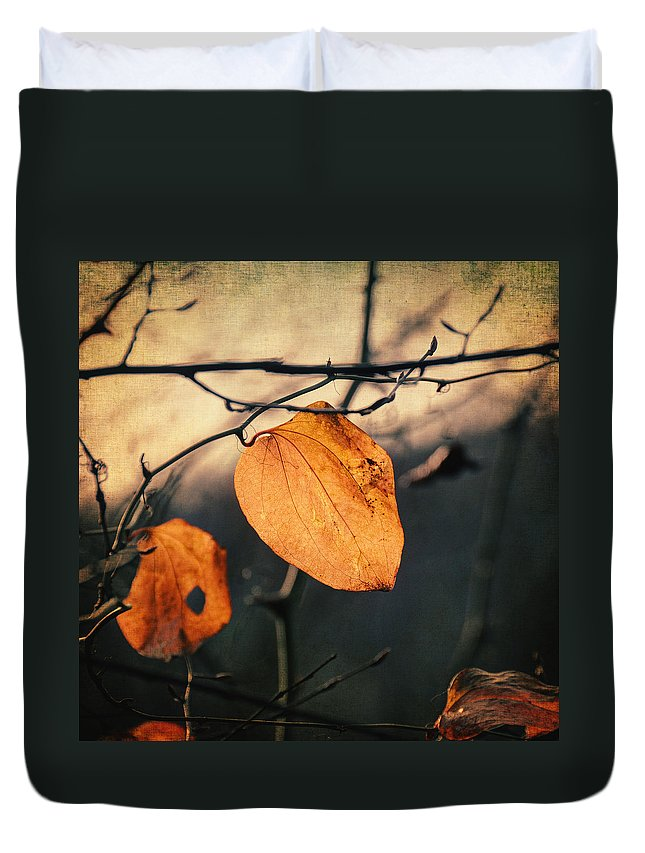 Leaf Duvet Cover featuring the photograph Last Leaves by Zapista