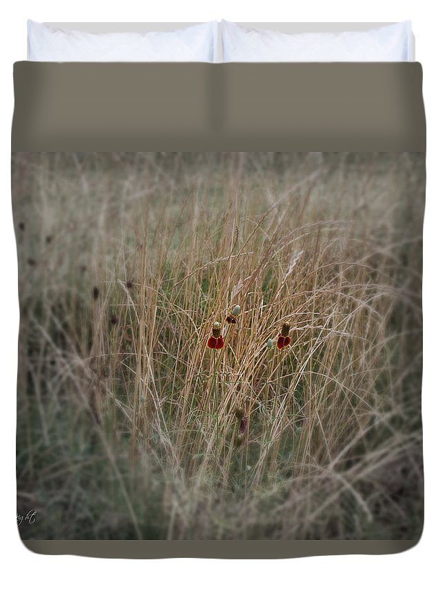 Popular Duvet Cover featuring the photograph Last Petals by Paulette B Wright