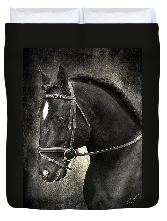 Traditional Gypsy Horse Duvet Cover featuring the photograph Latcho's Shadow by Fran J Scott