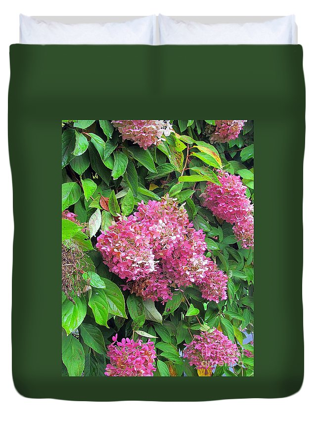 Hydrangea Duvet Cover featuring the photograph Late Hydrangea Flower by Elizabeth Dow