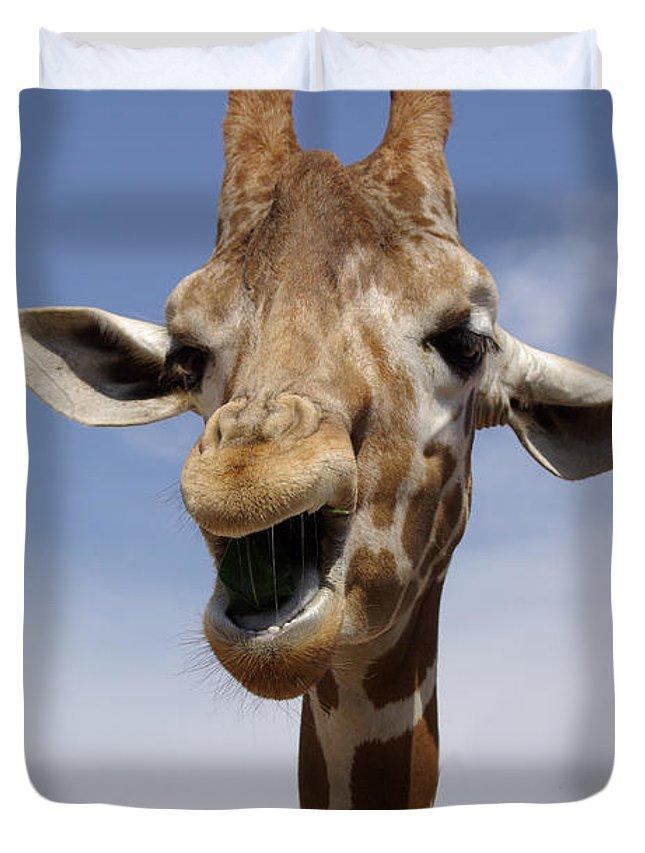 Baggage Covers Giraffe Head Animal Zoo Washable Protective Case