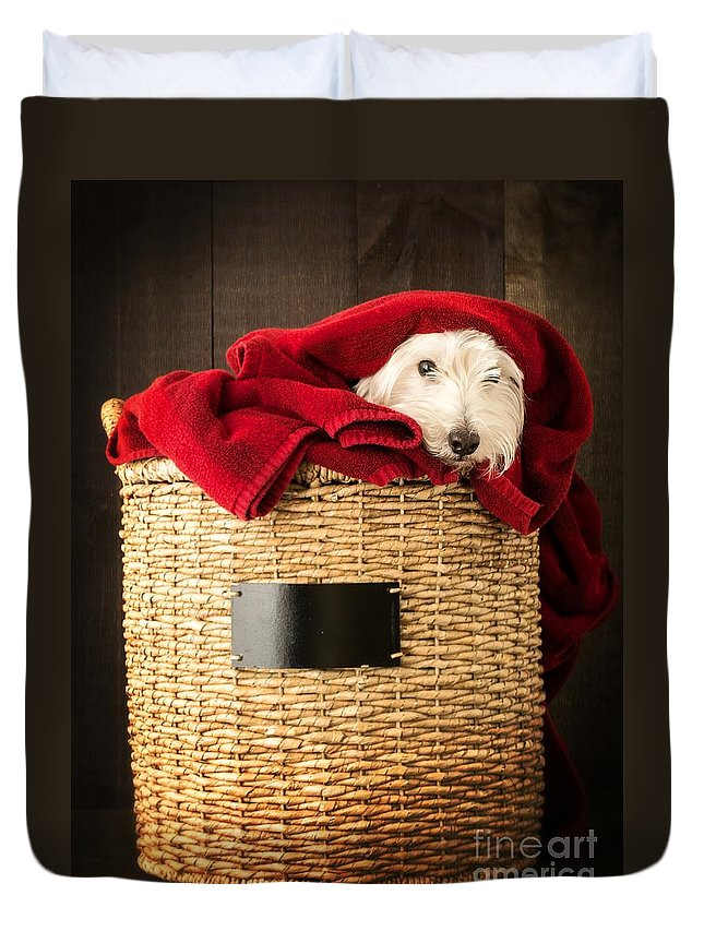 Dog Duvet Cover featuring the photograph Laundry Day by Edward Fielding