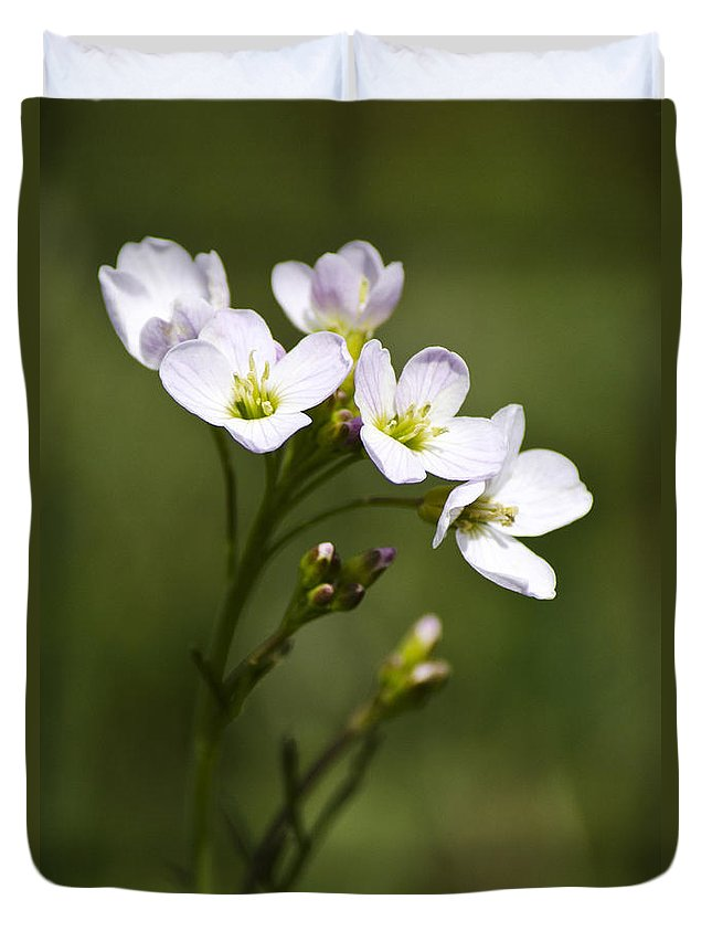 Flower Duvet Cover featuring the photograph Lavender Blush Cuckoo Flower by Christina Rollo