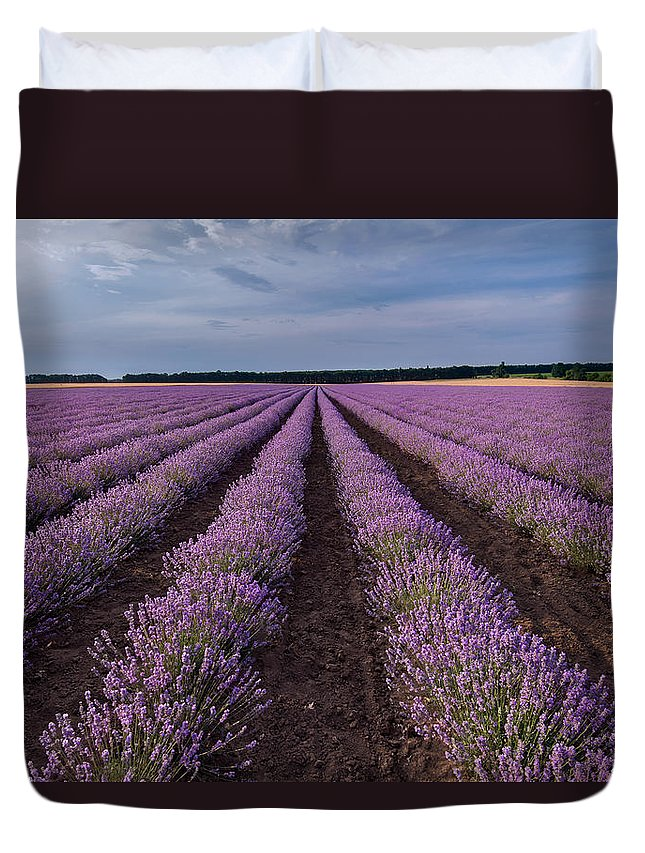 Lavender Duvet Cover featuring the photograph Lavender Field by Evgeni Ivanov